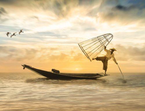 Vivre en équilibre et harmonie